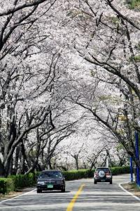 장복산공원
