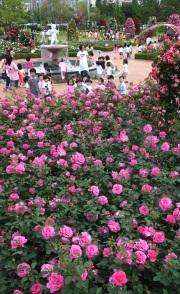 장미공원1